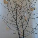 IMwood - Velikonoční dřevěná dekorace k pověšení - Ptáček s výřezem kapek 6 x 6,5 cm