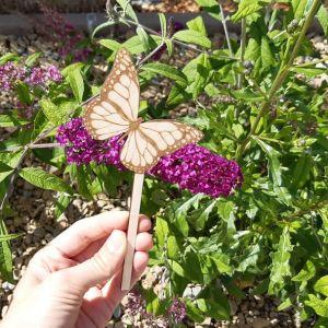 Zápich Motýlek